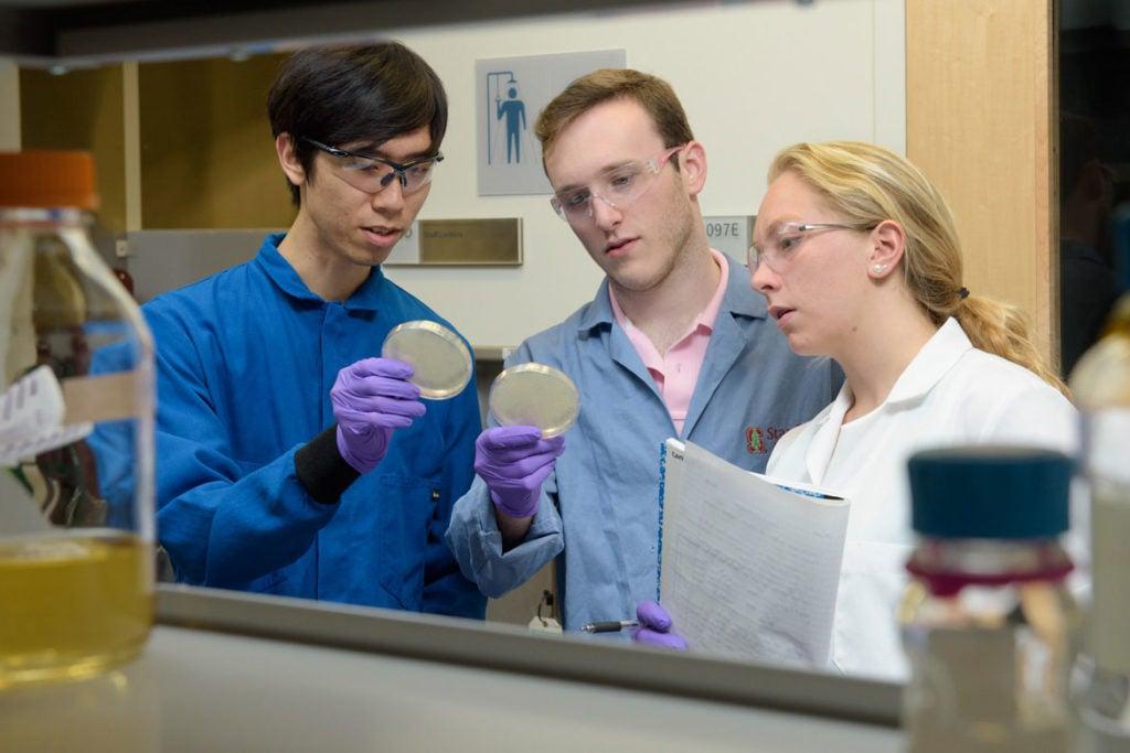 Students fighting superbugs